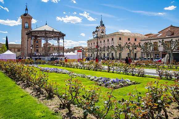 Visita Alcalá de Henares en trenes baratos en junio 2018
