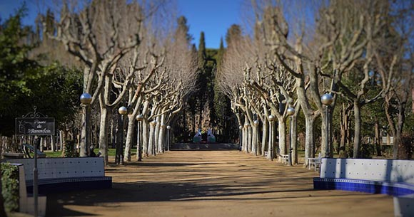 Trenes AVE baratos a Huesca en enero y febrero 2019