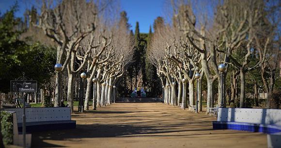 Viaja este mes de marzo 2019 en trenes AVE a Huesca