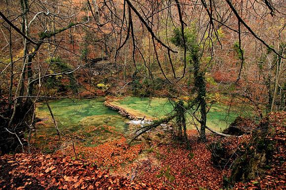 Descubre Navarra este otoño 2019 en trenes baratos